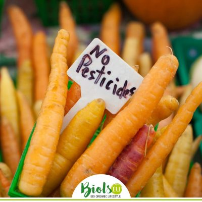"""alt= """"Bio-Karotten ohne chemische Pestizide"""""""
