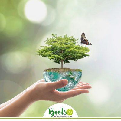 """Alt=""""biodiversità e cura ambiente"""""""